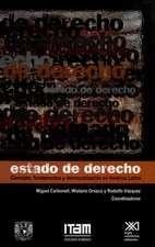 Estado de derecho. Concepto, fundamentos y democratización en América Latina