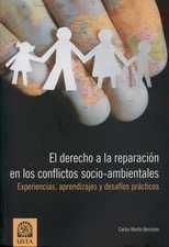 Derecho a la reparación en los conflictos socio-ambientales. Experiencias, aprendizajes y desafíos prácticos, El