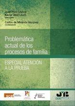 Problemática actual de los procesos de familia