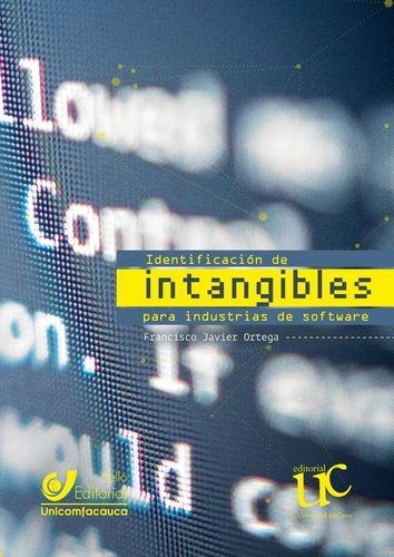 Identificación de intangibles para industrias de software